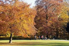 Herbstspaziergang im Hohenbuchen Park - Wiese mit Laub, Spaziergänger mit Hunden auf dem Weg zwischen den Herbstbäumen im Hohenbuchen Park.