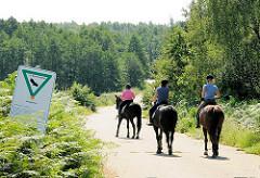 Ausritt im Naturschutzgebiet Höltingbaum - drei ReiterInnen reiten auf ihren Pferden auf der STrasse - im Hintergrund mit Bäumen bewachsene Hügel.