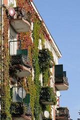 Mehrstöckiges Wohnhaus am Lehmweg - Fassade mit Wein bewachsen, teilweise mit Herbstfärbung - Weinblätter im Herbst.