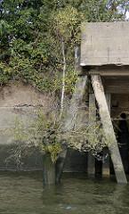 Kaimauer mit Verladebrücke aus Beton  im Hamburger Hafen; alte Holzdalbe mit Birke und Gräsern.