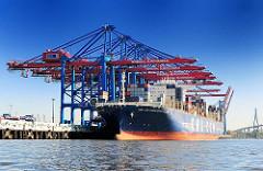 Der 356,50m lange Containerriese CMA CGM Christophe Colomb unter den Containerbrücken im Hamburger Hafen.