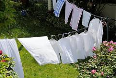 Grosse Wäsche - Weisswäsche und Geschirrtücher hängen auf einer Leine in einem Garten in Hamburg Blankenese zwischen blühendem Rhododendron.