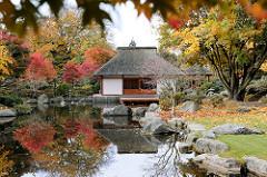 Teehaus im Japanischen Garten in Hamburg Planten un Blomen - Japanischer Ahorn mit Herbstblättern spiegeln sich im Wasser.