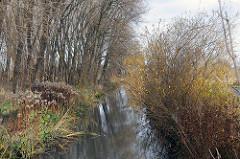Entwässerungsgraben - Wiese und Bäume am wulfsgraben.