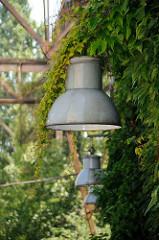 Alte Lampen an einem Kampnagelgebäude von Kletterpflanzen überwuchert.