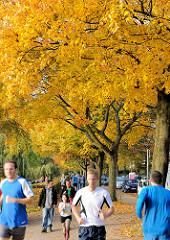 Herbstlich gefärbte Bäume am Winterhuder Ufer der Alster - Jogger + Spaziergänger auf dem Uferweg.