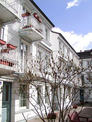 Hinterhof in der Hegestrasse - weiss gestrichene Etagenhäuser - Magnolienbaum mit Knospen.