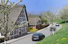 Fachwerkhäuser mit Reet gedeckt - Reetdachhäuser mit weissem Fachwerk - blühende Obstbäume im Frühling. Fotos aus Hamburg Neuenfelde.