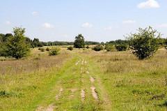 Wiesenlandschaft im Hamburger Naturschutzgebiet Höltingbaum - Feldweg und Hügellandschaft.