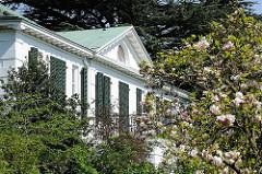 Landhaus Wesselhoft - blühende Magnolien im Garten - Bilder aus Hamburg Nienstedten, Bezirk Altona.