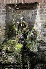 Verwitterte Ziegelmauer / Kaimauer; eingelassener  Eisenring vermodertem Tau und Wildkraut bewachsen.