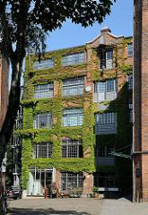 Mit Efeu bewachsene Fassade eines historischen Gewerbegebäudes am Goldbekplatz / HH-Winterhude.