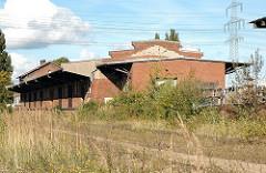 Harburger Güterbahnhof - Lagerschuppen mit Laderampe, Wildkraut / Unkraut. ( 2005)