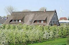 Bauernhaus, Fachwerkhaus inmitten blühender Obstbäume - Bilder aus Hamburg Francop.