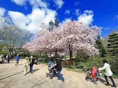 Hamburgs Park Planten un Blomen