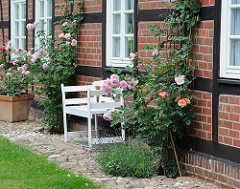 Sitzbank am Fachwerkhaus in Hamburg Marmstorf - blühende Rosen an der Hausfassade in der Sonne.