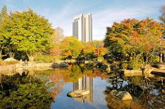 Hamburg im Herbst - Herbstfarben im Japanischen Garten in Planten un Blomen; das Hochhaus vom Hotel Radisson Blu spiegelt sich im Wasser eines Teichs.