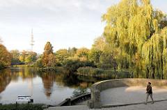 Herbst in der Hansestadt Hamburg - Herbstbäume am Wallgraben in den Hamburger Wallanlagen - im Hintergrund der Hamburger Fernsehturm.