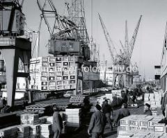 Kisten mit Zitrusfrüchten werden im Hansahafen per Kran gelöscht; Holzpaletten und Kisten sind auf dem O'Swaldkai gestapelt - Fotos von der Arbeit im Hamburger Hafen.  ( 1970 )