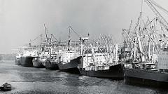 Frachtschiffe am Termianl Burchardkai im Hamburger Waltershofer Hafen. (1978 )