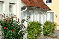 Rosenbüsche / Rosenstock mit roten Rosen an einer Hausfassade in Neustadt / Holstein.