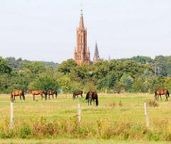 Kirchturm der Klosterkirche von Malchow; Ursprungsbau 1849, neogotischer Backsteinstil; grasende Pferde auf einer Weide.
