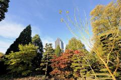 Japanischer Garten im Hamburg - Planten un Blomen - im Hintergrund das Gebäude vom Hotel  Radisson Blu am Dammtor.