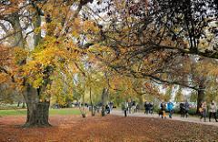 Herbstbäume an der Alster im Alstervorland - Spaziergänger auf dem Alsterrundweg in Hamburg Rotherbaum.
