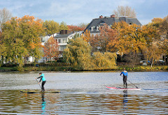 Blick über die Alster zur Bellevue in Hamburg Winterhude - Bäume mit Herbstlaub stehen an der Hamburger Aussenalster; Villen zwischen Bäumen am Ufer des Sees.