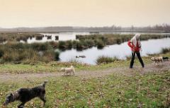 Spaziergänger mit Hunden im Himmelmoor / Quickborn; mit 605 Hektar das Größte Hochmoor in Schleswig-Holstein. Noch findet im Moor Torfabbau statt, aber es wird eine schrittweise Renaturierung betrieben.
