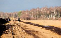 Himmelmoor in Quickborn - auf der 605 Hektar grossen Hochmoorfläche wird teilweise noch Torf abgebaut; Schienen der Lorenbahn, die den Torf zum naheliegenden Torfwerk transportiert; Birkenwald im Winter.