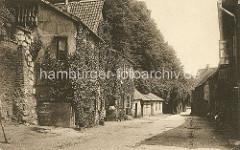 Alte Fotografie von der Bardowieckermauer in Lüneburg - Häuser an der Mauer mit Efeu bewachsen (ca. 1900).
