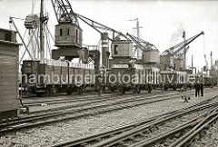 Am Holthusenkai an der Norderelbe verstauen Hafenarbeiter Papierholz in offene Bahnwaggons der Baureihe BRESLAU. Im Freiladeverkehr wurden die verschiedensten Massengüter vom Schiff direkt auf die Bahn umgeschlagen.