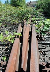Stillgelegte Eisenbahngleise / mit Brombeerranken überwucherte Weiche in Hamburg Wilhelmsburg.