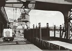 Mit Elektrokarren mit Anhänger bringen die Fracht aus dem Lagerschuppen auf die Laderampe des Kamerunkais im Hamburger Indiahafen. Ein Kran nimmt die Ballen mit dem Ladegeschirr an den Haken, um die Ladung auf die Schuten zu bringen, die an der K