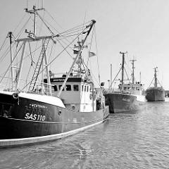 Schiffe der Fischfangflotte im Fischereihafen der Hafenstadt Sassnitz auf der Ostseeinsel Rügen.