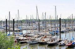 Hamburger Yachthafen in Wedel -  Norddeutschlands größten Yachthafen mit ca. 2000 Liegeplätze.