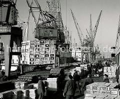 Die Ladung Apfelsinen eines Frachtschiffs wird im Hansahafen gelöscht. Portalkräne laden die Kisten auf dem Kai ab - dort stapeln Arbeiter sie auf Holzpaletten, die dann mit Gabelstaplern in den Fruchtschuppen gebracht werden; ca. 1970.