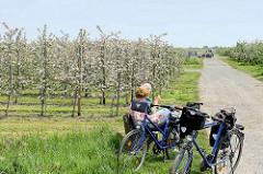 Fahrradausflug im Obstanbaugebiet Altes Land in Jork, Landkreis Stade - Ruhepause auf einer Bank, blühende Apfelbäume - Apfelblüte im Frühling.