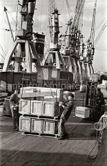 Zwei Hafenarbeiter legen das Ladegeschirr an eine Palette mit Kisten an  - im Hintergrund fahren zwei Gabelstapler mit ihrer Ladung über die Laderampe am Togokai des Hamburger Südwesthafens. Zwischen den Kranen und der Rampe stehen die teilweise bel