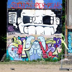 Graffiti am leerstehenden Werftgebäude, Ufer des Kanals Reiherstieg in Hamburg Wilhelmsburg.
