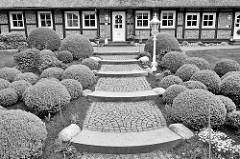 Fachwerkhaus mit Vorgarten - runder Buchsbaum in unterschiedlichen Größen - gepflasterter Weg mit Steinstufen - Bilder aus Hamburg Marmstorf, Schwarz Weiss Fotografie.