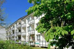 Wohnblocks - Balkons in der Sonne; Kastanienbaum mit Blüten - Bilder aus dem Hamburger Stadtteil Stellingen.