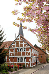 Fachwerkgebäude in der Strasse Grosse Seite von Borstel / Jork, blühende Kirschbäume / japanische Zierkirschen - rosa Blüte.