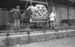 Die zum Schutz verpackten Bananenstauden werden in einer Transportkiste von Bord des Kühlfrachters an Land gehievt. Auf der Kaianlage nehmen Lagerarbeiter die Hieve mit den Bananen in Empfang.