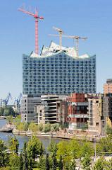 Blick über den Grasbrookhafen zu modernen Wohnhäusern am Dalmannkai und der Elbphilharmonie mit Baukränen.