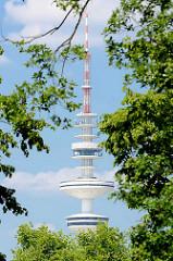 Blick durch die Bäume in Planten un Blomen zum Hamburger Fernsehturm.