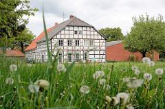 Wiese mit Pusteblumen - Fruchtstand vom Löwenzahn; Fachwerkhaus in Dickfeitzen / Wendland.