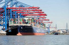 Containerschiff CMA CGM JULES VERNE im Hamburger Hafen unter den Containerbrücken vom Container Terminal Burchardkai - dahinter legt ein Feederschiff an - Köhlbrandbrücke.