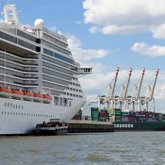 Das Kreuzfahrtschiff MSC Splendida liegt am Kai vom neuen Kreuzfahrtterminal Steinwerder  im Hamburger Hafen. Das Schiff hat eine Länge von 333 m und eine zugelassene Passagierzahl von 3274 sowie eine Besatzung von ca. 1370